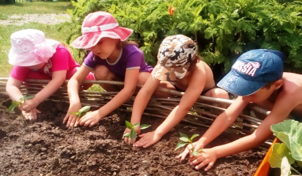 Дачная трудотерапия: как научить детей любить помогать взрослым
