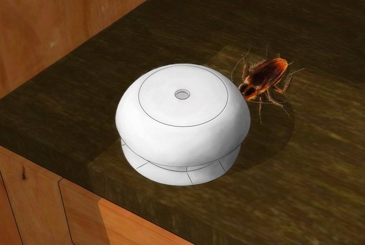 В чем заключается опасность тараканов и какие средства использовать для борьбы с ними